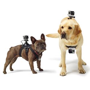GoPro用 ドッグハーネス