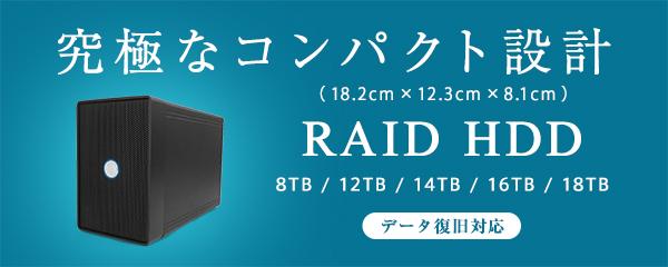 RAID HDD